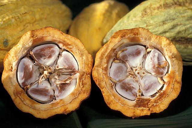 640px-Cacao-pod-k4636-14